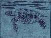 Sea Turtle in Blue Linocut