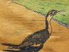 Cormorant on Brown Linocut