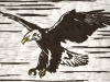 Bald Eagle Linocut
