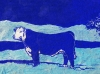 Bull in Winter in Blue Linocut