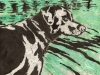 Labrador in Green Linocut