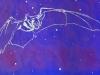 Pallid Bat in Blue Linocut
